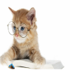 cute-cat-with-glasses-puzzle