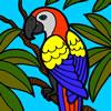 beautiful-parrot-coloring